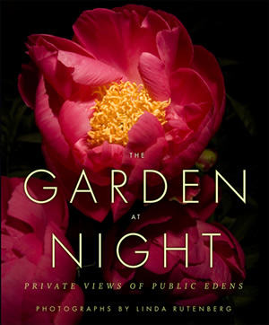 Image Missing: Garden at Night